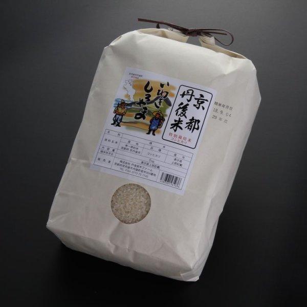 画像1: 京都丹後産コシヒカリ特別栽培米 いわきしろやま(5kg) (1)