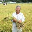 画像3: 京都丹後産コシヒカリ特別栽培米 いわきしろやま(5kg) (3)